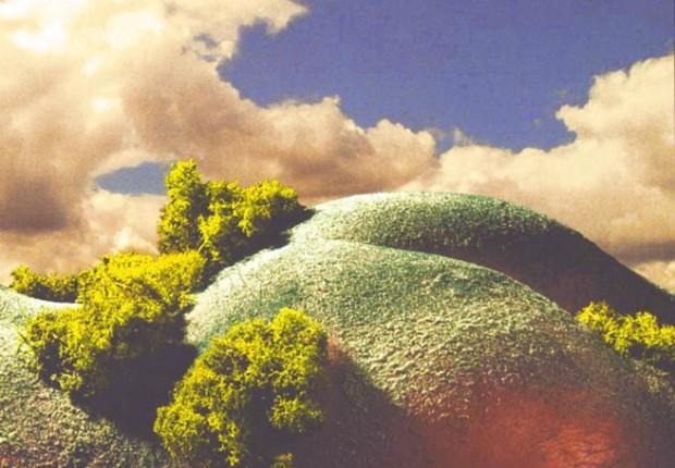 Tilby Twin Cheeks Landscape