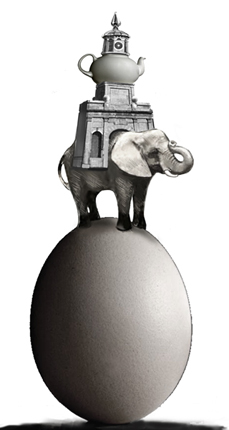 Tilby  india dock elephant proposal
