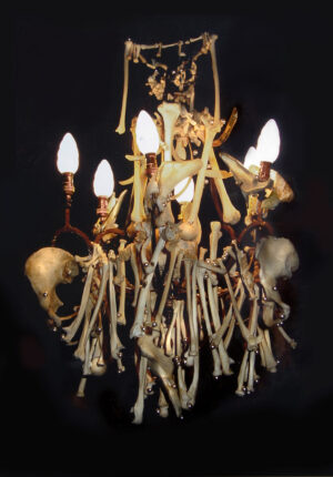 tilby bones&pearl chandelier