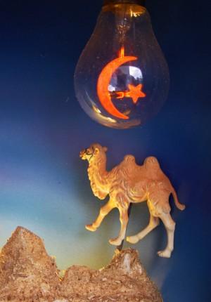 nativity camel & star detail